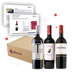 Entdeckung Weinpaket von November